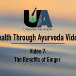 utrecht ayurveda, netherlands ayurveda, better health through ayurveda, manjula paul