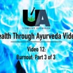 utrecht ayurveda, netherlands ayurveda, nederlands ayurveda, better health through ayurveda, burnout