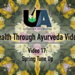 Nederlands ayurveda, netherlands ayurveda, utrecht ayurveda, Manjula Paul, ayurvedic massage